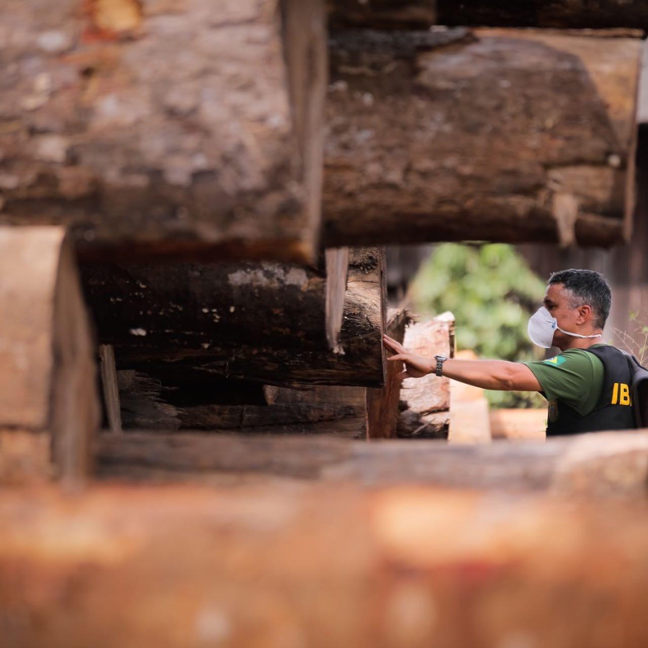 Em carta, 56 ONGs cobram que MPF retome força-tarefa na Amazônia